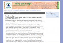Screenshot of Trinity Landscape